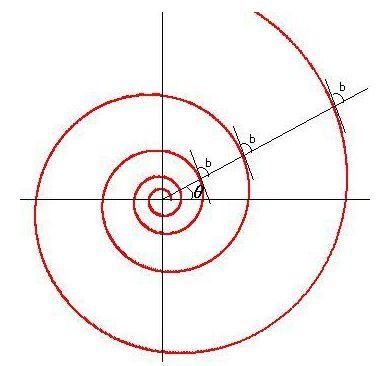 Log-spiral.JPG
